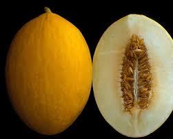 Connaissez-vous le melon canari?!