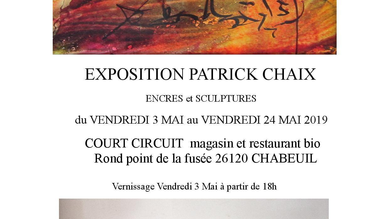 EXPOSITION DE PATRICK CHAIX